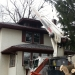 tree-removal-company-chicago-2