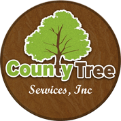 Chicago Tree Service: Tree Removal Services Chicago Tree Trimming Service Chicago Tree Cutting Chicago Stump Removal Chicago Tree Service Chicago